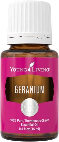 GERANIE – GERANIUM Pelargonium graveolens