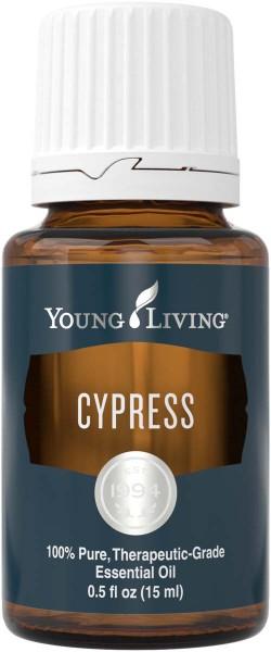 ZYPRESSE – CYPRESS Cupressus sempervirens