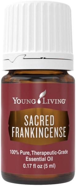 HEILIGER WEIHRAUCH – SACRED FRANKINCENSE Boswellia sacra