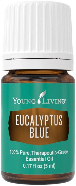 EUCALYPTUS BLUE Eucalyptus bicostata