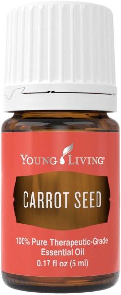 KAROTTENSAMEN – CARROT SEED Daucus carota