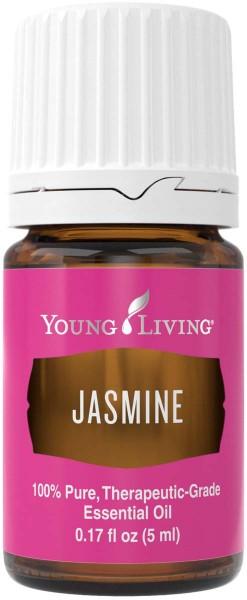 JASMIN – JASMINE Jasminum officinale