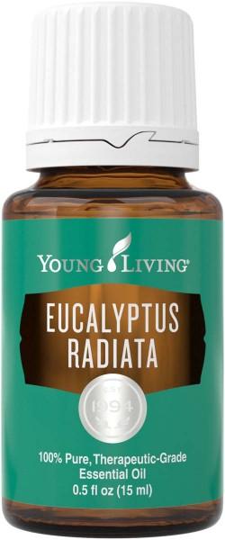 EUCALYPTUS RADIATA Eucalyptus radiata