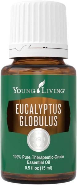 EUCALYPTUS GLOBULUS Eucalyptus globulus